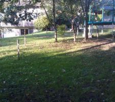 Voici l'espace dédié à ce projet de piscine en auto-construction. Quelques arbres à abattre avant de porter le premier coup de godet.