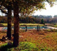 Dalle béton drainant terminée au printemps dernier, filet anti-feuilles posé début novembre.