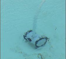 Bon ! c'est un peu sale avec la colle qui est tombée dans la piscine, un petit coup de robot.