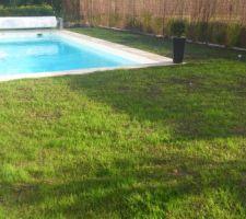 Photos de piscines for Coque piscine 4x2