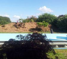 Le talus  et la piscine vue de la terrasse