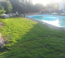 Le reste de de pelouse avant la mise en place de la margelle et la plage de 1m50 de large autour du bassin