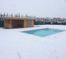 Piscine sous la neige