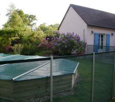 Cloture de la piscine avec en fond notre bosquet de rhododendrons .