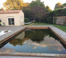 Après 18 mois, bois grisé. On distingue bien sur cette photo les deux profondeurs de notre piscine, 1,5m et 1,8m.