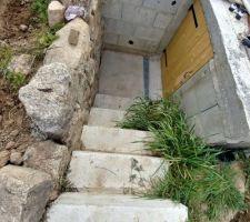 Escalier d'accès au local technique. PS: le jardin n'en ai pas un, mais un chantier envahi de mauvaises herbes.