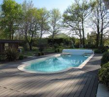 Sortie de l'hiver: autour de la piscine, ça pousse