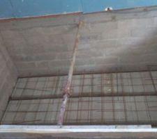 Voici mon petit bassin façonné par le constructeur de la maison