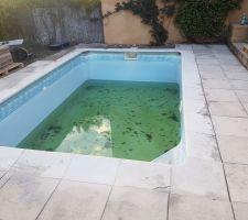 La piscine avant