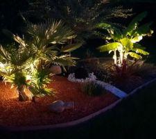 Ambiance nocturne autour de la piscine