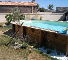 Galet d'ornement pour le tour de piscine