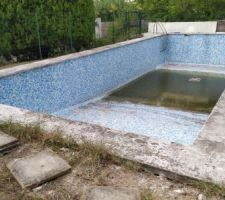 Vu de la piscine actuelle, avant reduction et travaux