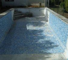 Edcalier piscine
