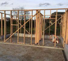 La construction du cabanon avance vite...