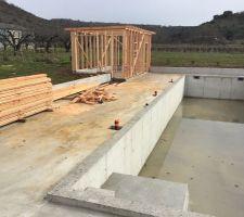 La construction du cabanon continue...