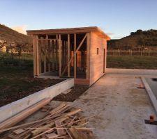 Le cabanon en cours de construction....