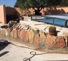 Création d'un mini jardin de cactus