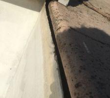 Revetement bassin en fibre qui est décollé sur environ 1m2 au grand bassin