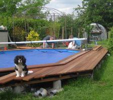 Et le chef qui surveille  Pendant que mon fils et moi continuons cette fichue terrasse Lol