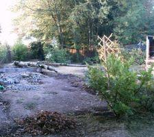 Abattages des arbres et on a commencé à démonter le barbecue sur la droite de la photo