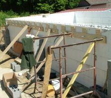 Préparation pour la muralière