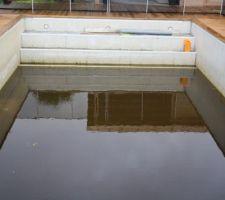 La piscine à l'abandon si c'est pas malheureux